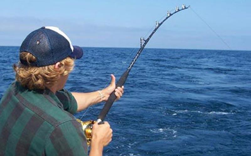 рыболовный магазин алания