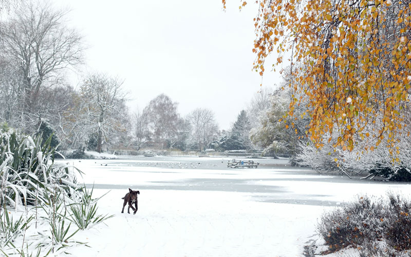 A general view of a frozen over boating lake in Alexandra Palace as freezing weather conditions and snow that has created chaos in Scotland and Northern England move South to the capital, on November 30, 2010 in London, England. (GETTY IMAGES)