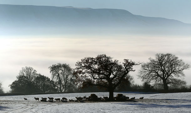 A general view of sheep in a snow covered field with the Black Mountains in the background in Hay-On-Wye, United Kingdom. (GETTY IMAGES)