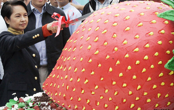 Largest fruit shortcake: Philippine President Gloria Macapagal Arroyo slices a giant strawberry shaped shortcake that won the Guiness World Record's record for the largest fruit shortcake during her visit to La Trinidad in Benguet Province north of Manila March 19, 2007. (REUTERS)