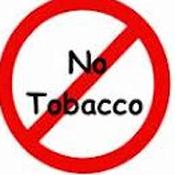 against tobacco essay