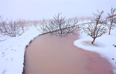 Snow that fell in 2009 in the same area of Ras Al Khaimah (File)