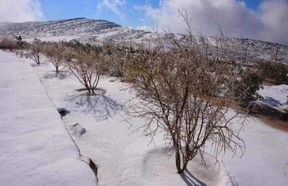 Snow on Jabal Jais on January 24, 2009 (File)