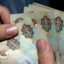3 ways to make money without leaving your home in Dubai