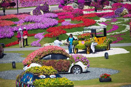 Dubai Miracle Garden Dubai Butterfly Garden Announce Temporary Closure Due To Covid 19 Concerns News Emirates Emirates24 7