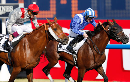 "Christophe Soumillon (L), riding Al Mamun Monlau of France, races towards the finish line against Paul Hanagan, riding Versac Py of France, during the first race ""Dubai Kahayla Classic"" of the Dubai World Cup at the Meydan Racecourse in Dubai March 30, 2013. (REUTERS)"