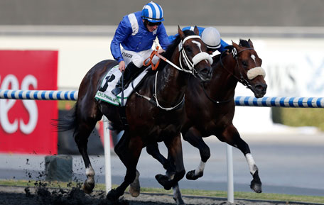 """Paul Hanagan, riding Soft Falling Rain of South Africa, races towards the finish line during the second race """"Godolphin Mile"""" of the Dubai World Cup at the Meydan Racecourse in Dubai March 30, 2013. (REUTERS)"""