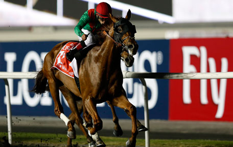 Joel Rosario, riding Animal Kingdom of the U.S., races to the finish line to win the ninth and final race of the Dubai World Cup at the Meydan Racecourse in Dubai March 30, 2013. (REUTERS)