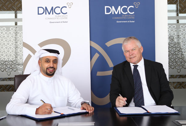 Dmcc business plan