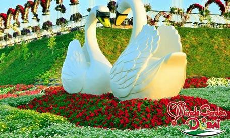Dubai S Miracle Garden Opens Emirates 24 7