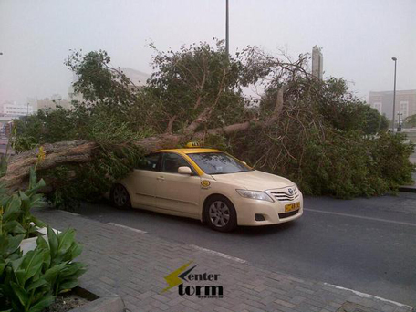 Tree crashes on top of taxi. (Image released by Storm Center UAE)