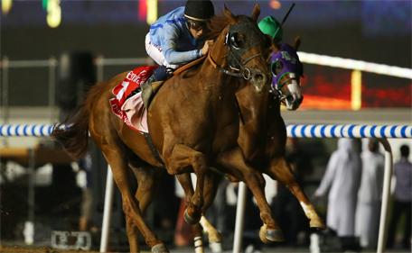 Jockey William Buick rides Prince Bishop, owned by Crown Prince of Dubai Sheikh Hamdan Bin Mohamed Bin Rashid Al Maktoum, to win the $10 million Dubai World Race on March 28, 2015 at Meydan racecourse in Dubai. (AFP)