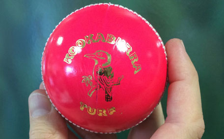 Day Night Test To Go Ahead Despite Stink Over Pink Ball Sports Cricket Emirates24 7