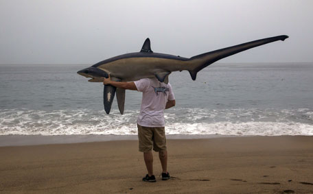 A man walks with a figure of a shark before the arrival of hurricane Patricia in Puerto Vallarta, Mexico on October 23 ,2015. Monster Hurricane Patricia roared toward Mexico's Pacific coast on Friday, prompting authorities to evacuate villagers, close ports and urge tourists to cancel trips over fears of a catastrophe. The US National Hurricane Center called Patricia the strongest eastern north Pacific hurricane on record. It said the storm will make a potentially catastrophic landfall later Friday in southwestern Mexico.  (AFP)