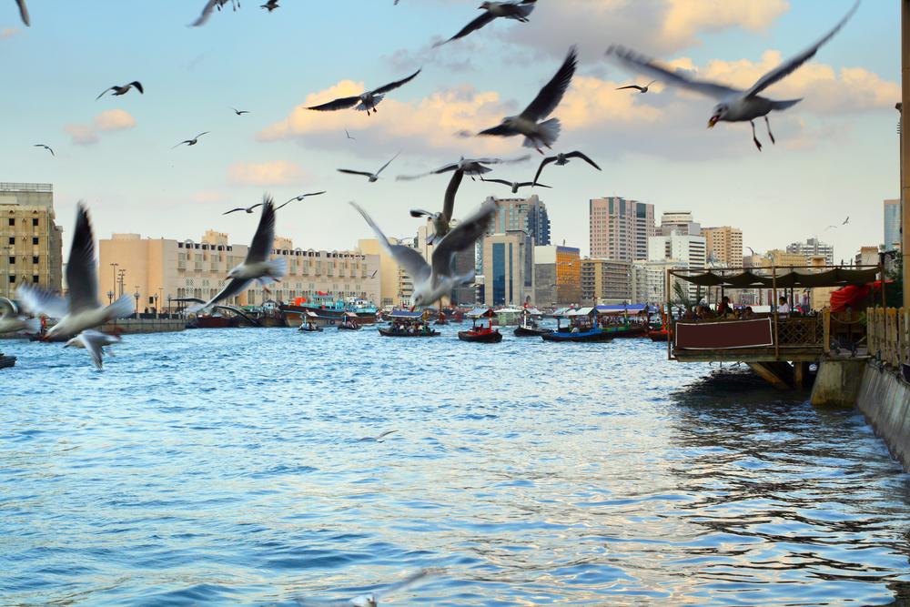 Winter in Dubai. (Shutterstock)
