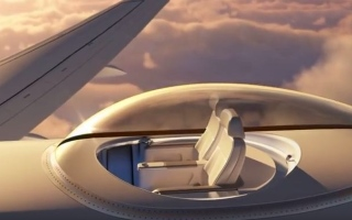 Photo: Video: Glass bubble window seat on top of plane