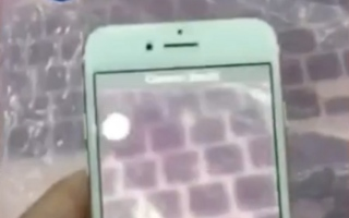 Photo: Possible Apple 'iPhone 7' video shows functional camera