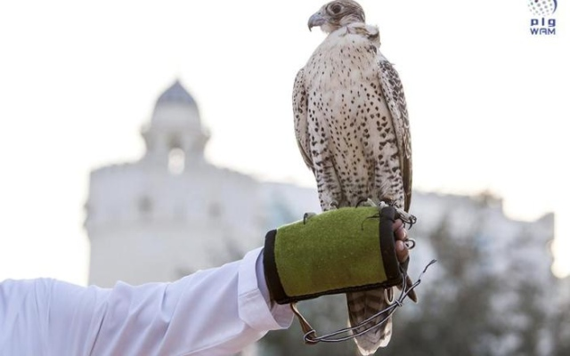 Abu Dhabi Culture Authority welcomes five new countries joining the UNESCO's falconry file