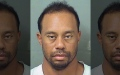 Photo: Tiger Woods says he's getting 'professional help'