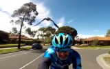 Photo: Bird repeatedly attacks biker