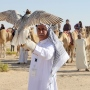 4th International Festival of Falconry concludes in Abu Dhabi