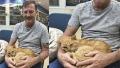 الصورة: Man reunites with pet cat lost 14 years ago