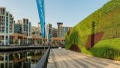 الصورة: Dubai Properties unveils Middle East's largest living Green Wall at Dubai Wharf