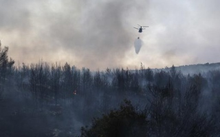 الصورة: Firefighters battle forest blaze near southern Greek village