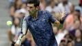 Photo: Djokovic survives 'mini-me' lapse to reach US Open 3rd round