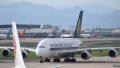 الصورة: Singapore Airlines bans lion bones in cargo