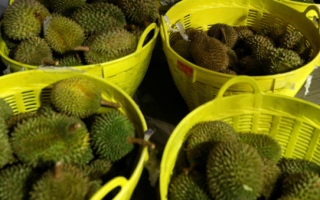 Photo: Passengers create stink over pungent planeload of durian