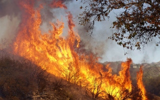Photo: California wildfire toll matches deadliest ever, 29 fatalities