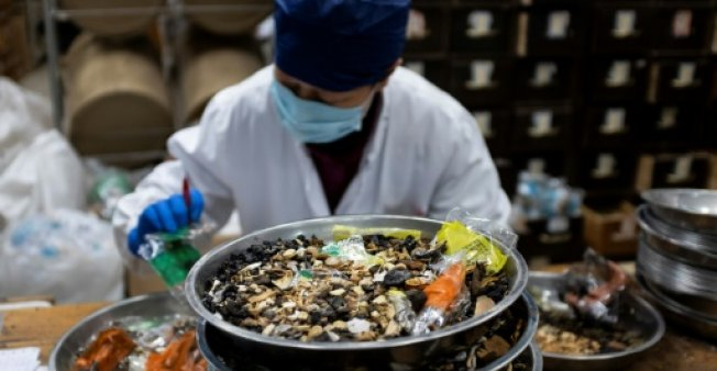 China seeks new markets for ancient medicines