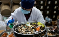 Photo: China seeks new markets for ancient medicines