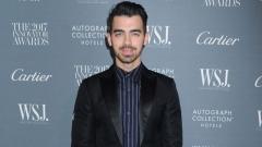 Photo: Joe Jonas: Nick Jonas and Priyanka Chopra are a 'match made in heaven'