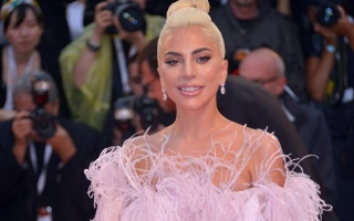 Photo: Insect species named after Lady Gaga