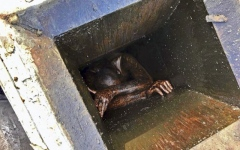 Photo: Crews rescue man stuck in grease vent of empty restaurant