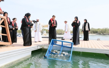 Photo: EAD releases first batch of fish into Abu Dhabi waters