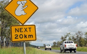 Photo: Police stop 4 kids who drove SUV 600 miles down Aussie coast