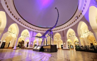 Dubai to witness Middle East's first dinosaur skeleton auction