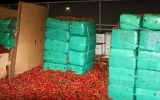 Photo: Officials seize marijuana mixed with jalapeno peppers