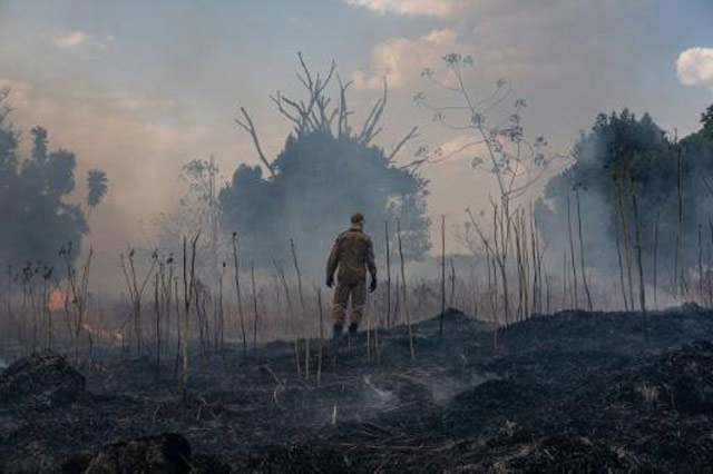 Brazil's Amazon basin fires keep surging