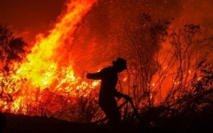 Photo: Indonesia forest fires surge, stoking global warming fears