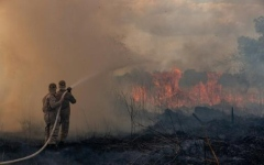 Photo: As global leaders meet, the Amazon rainforest burns
