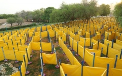 Photo: Al Ain Zoo challenges visitors with world's largest mobile maze
