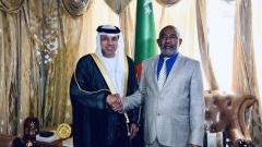 Photo: Comorian President receives UAE Ambassador