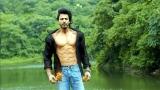 Photo: SRK's comeback film starts in March