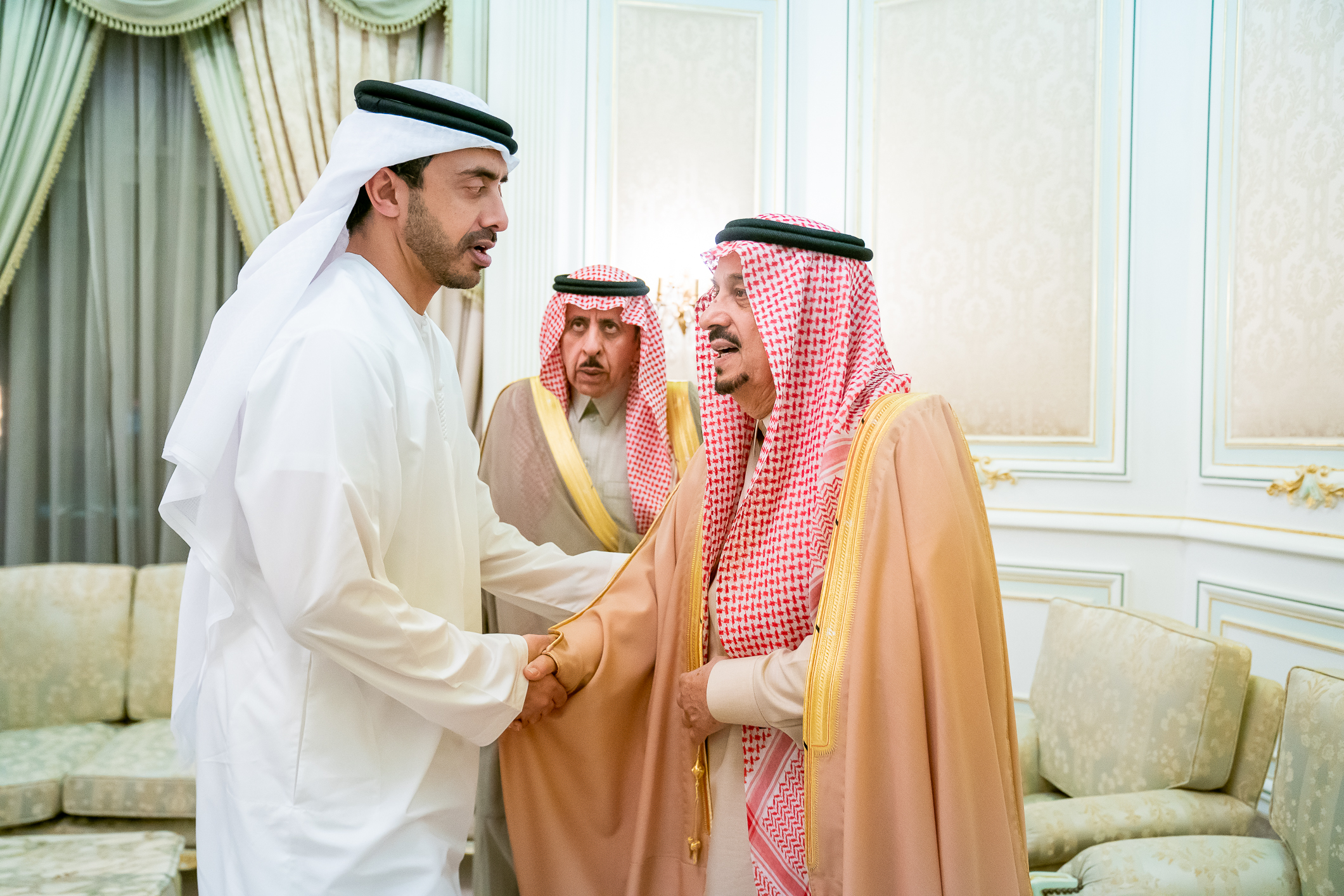 Photo: Abdullah bin Zayed conveys condolences of UAE Rulers to sons of Prince Miteb bin Abdelaziz