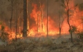 Photo: 'Significant fears' over 17 missing in Australian bushfires
