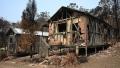 Photo: Rain offers hope in Australian bushfire fight